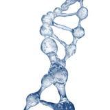 ejemplo 3d del modelo de la molécula de la DNA del agua Foto de archivo