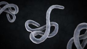 ejemplo 3D del virus de ebola Foto de archivo libre de regalías
