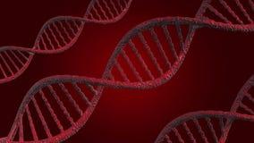 Ejemplo D N A o ácido desoxirribonucléico, modelo 3D en un fondo rojo metrajes