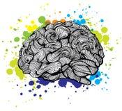 Ejemplo de Brain Bright Idea Garabatee el concepto del vector sobre cerebro humano e ideas Ejemplo creativo libre illustration