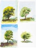 Ejemplo de color de agua, pintura del árbol fotografía de archivo