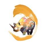 Ejemplo de color de un rinoceronte Fotos de archivo libres de regalías
