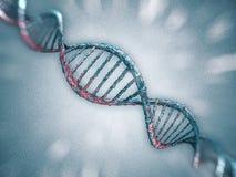 Ejemplo de Digitaces de un modelo de la DNA 3d Fotografía de archivo