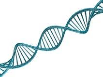 Ejemplo de Digitaces de un modelo de la DNA 3d Foto de archivo libre de regalías