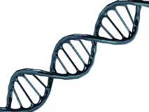 Ejemplo de Digitaces de un modelo de la DNA representación 3d Fotos de archivo