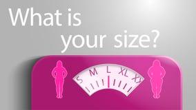 Ejemplo de escalas con una escala bajo la forma de tamaños de la ropa para las mujeres stock de ilustración