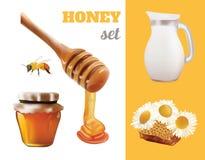 Ejemplo de Honey Set Realistic del vector Tarro, banco, abeja, panal, manzanilla, diseño de Honey Pouring From Wooden Stick Foto de archivo libre de regalías