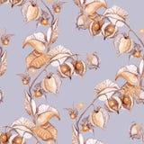 Ejemplo de la acuarela de la cereza de invierno stock de ilustración