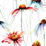 Ejemplo de la acuarela con las flores de los Gerberas Imagen de archivo
