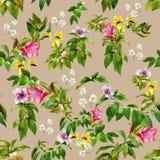 Ejemplo de la acuarela de la hoja y de flores Imagenes de archivo