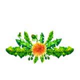 Ejemplo de la acuarela de los dientes de león de las flores Composición manual Mime al día del ` s, boda, cumpleaños, Pascua, día Foto de archivo