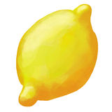 Ejemplo de la acuarela del limón Imagen de archivo