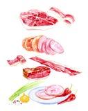 Ejemplo de la acuarela del sistema cocinado de la carne Cebollas verdes, ajo, jamón, salchicha, jamón, pimienta de chile, cerdo y stock de ilustración