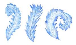 Ejemplo de la acuarela de los modelos de Frost ilustración del vector