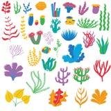 Ejemplo de la alga marina stock de ilustración