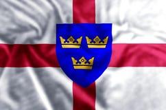 Ejemplo de la bandera de East Anglia ilustración del vector