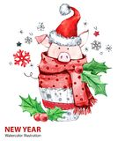 Ejemplo de la Feliz Año Nuevo 2019 Navidad Cerdo lindo en bufanda del invierno con el sombrero de Papá Noel Torta de la acuarela  ilustración del vector