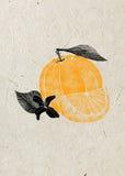 Ejemplo de la fruta anaranjada con la flor, hoja, rebanada en fondo beige del papel de arroz Imágenes de archivo libres de regalías