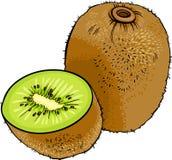 Ejemplo de la historieta de la fruta de kiwi Foto de archivo libre de regalías