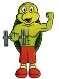 Ejemplo de la historieta de una tortuga que lleva a cabo pesa de gimnasia Charac del vector Fotos de archivo