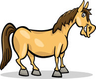 Ejemplo de la historieta del animal del campo del caballo Foto de archivo