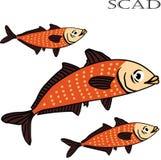 Ejemplo de la historieta del color de los pescados del Scad Imagen de archivo libre de regalías