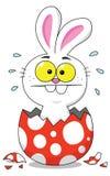 Conejito de pascua dentro del huevo de Pascua Foto de archivo libre de regalías