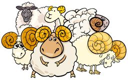 Ejemplo de la historieta del grupo del Ram y de las ovejas stock de ilustración
