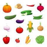 Ejemplo de la historieta de las verduras sanas crecidas en una granja Un sistema de los elementos para su diseño Iconos del vecto Foto de archivo