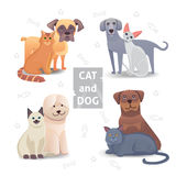Ejemplo de la historieta linda del gato y del perro Amigos caseros del animal doméstico Imagen de archivo