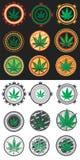Ejemplo de la hoja de la marijuana Imágenes de archivo libres de regalías
