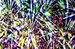 Ejemplo de la hoja de la palmera Fotografía de archivo