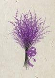 Ejemplo de la lavanda del ramo con la cinta festiva de la lila aislada en fondo beige del papel de arroz Imagen de archivo libre de regalías