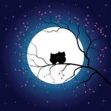 Ejemplo de la Luna Llena del vector con las estrellas y los árboles Fotografía de archivo libre de regalías