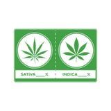 Ejemplo de la marijuana del cáñamo del color del vector ilustración del vector