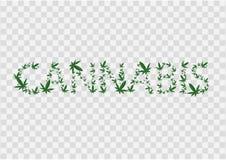 Ejemplo de la muestra del c??amo La inscripci?n se alinea con las hojas de la marijuana Vector Icono verde oscuro en transparente libre illustration