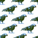 Ejemplo de la naturaleza Postal Animales de la selva Loro en el parque zoológico Modelo inconsútil Fotografía de archivo libre de regalías