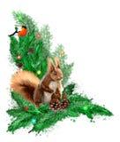 Ejemplo de la Navidad con la guirnalda, el piñonero y la ardilla del abeto libre illustration