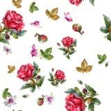 Ejemplo de la pintura de la acuarela de la rosa del rojo, modelo inconsútil Fotos de archivo