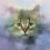 Ejemplo de la pintura del gato del retrato Imagen de archivo