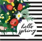 Ejemplo de la primavera del vector hola Ramo de la flor Flores salvajes Fotos de archivo libres de regalías