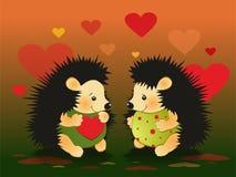 Ejemplo de la tarjeta del día de San Valentín de los amantes del erizo Imagenes de archivo