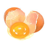 Ejemplo de la yema de huevo de la grieta del huevo Foto de archivo