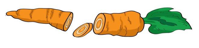 Ejemplo de la zanahoria Imagenes de archivo