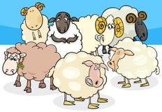 Ejemplo de las ovejas y de la historieta del grupo de los espolones ilustración del vector