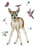 Ejemplo de los ciervos de huevas del bebé en acuarela Foto de archivo