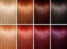 Ejemplo de los colores del pelo Imágenes de archivo libres de regalías