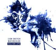 Ejemplo de los leones Imagen de archivo libre de regalías