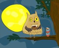 Ejemplo de medianoche del vector del búho Foto de archivo libre de regalías