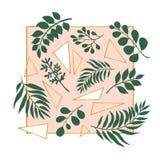 Ejemplo de moda de hojas exóticas y de triángulos de oro en el fondo rosado stock de ilustración